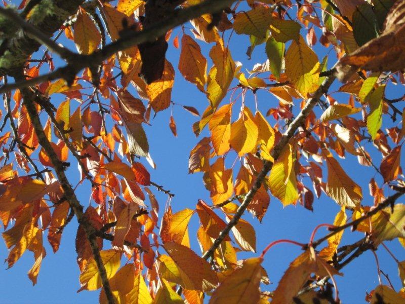 Algarve in autumn